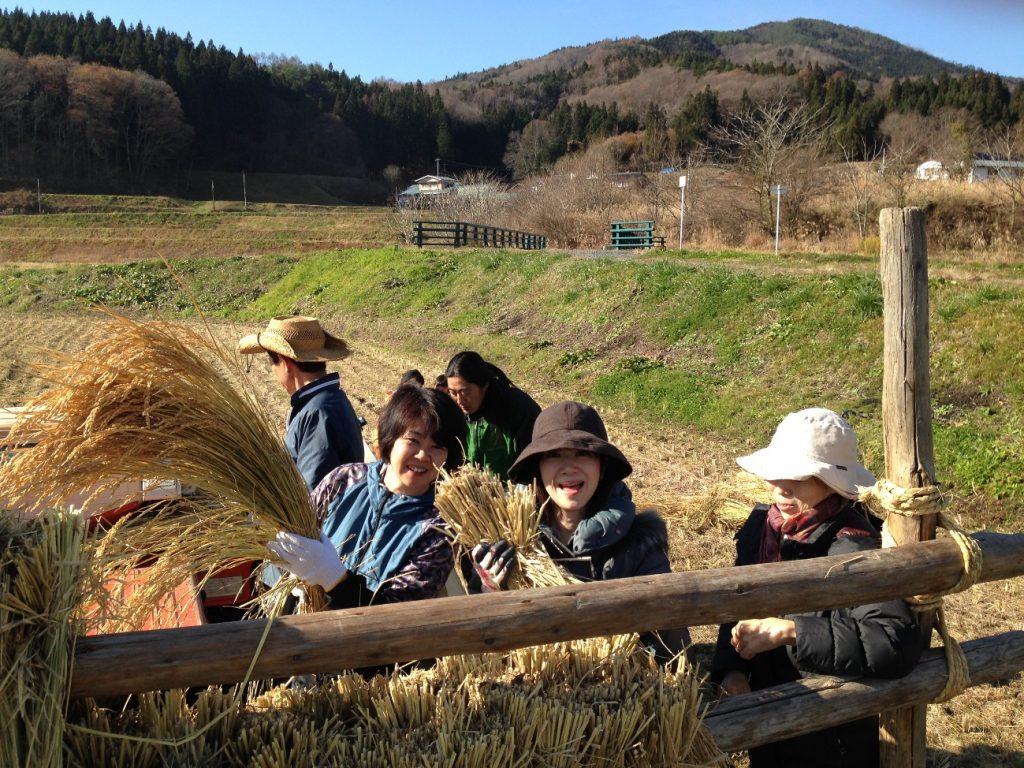 2014  遠野 ササシグレと大豆収穫体験ツアー