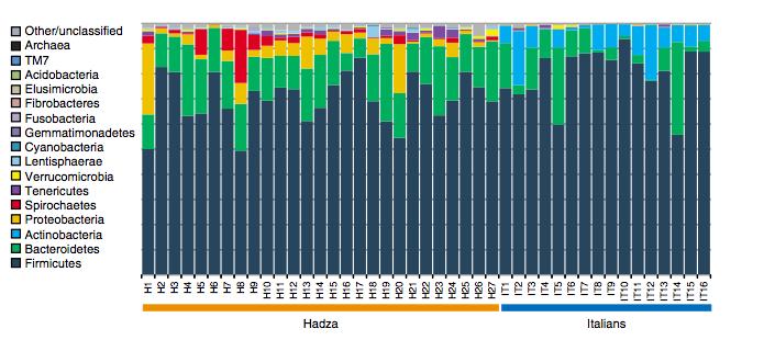 "(S. L. Schnorr et al. ""Gut microbiome of the Hadza  hunter-gatherers"" DOI:10.1038/ncomms4654)"
