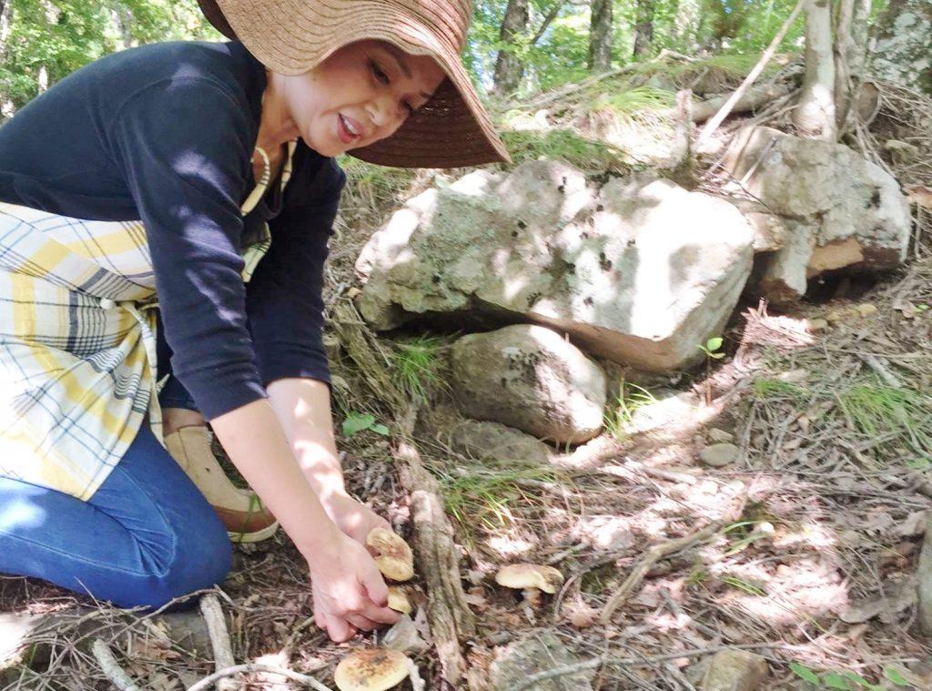 伊那谷の山でキノコ採りをする滝田さん